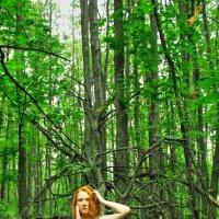 Лесная нимфа :: Фото Яника