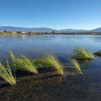 озеро Алаколь :: Dmitriy Sagurov