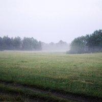 В окрестностях Уфы. :: Виктор Куприянов