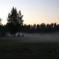 Полоской белого тумана... :: Александр Попов