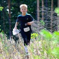 Люди бегут по лесу :: Алексей Шестаков