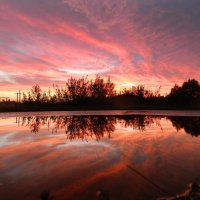 Sunset :: Maggie Aidan