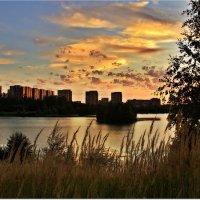 Город на исходе дня :: Вячеслав Минаев