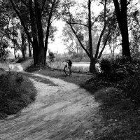 Велосипед ждёт своего хозяина :: Света Кондрашова