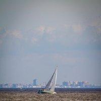 Ораниенбаумский морской фестиваль 2016 :: Sasha Bobkov