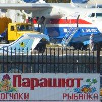 Авиаподдержка рыбаков .. :: Alexey YakovLev
