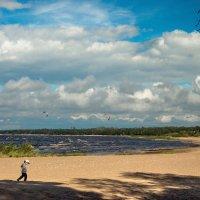 На Финском заливе 3 :: Виталий