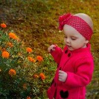 цветочки... :: Марина Климович