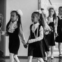 В школу в любом состоянии :: Николай Велицкий