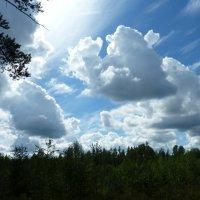 облака :: Надя Попова