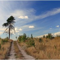 Дорога к облакам :: generalov545