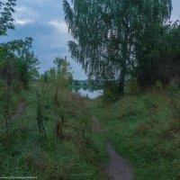 Тропинка к реке. :: Виктор Евстратов