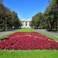 Вид на Михайловский замок :: Наталья