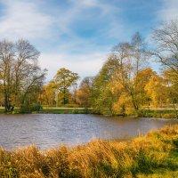 На берегу озера Разлив 3 :: Виталий