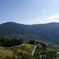 Дорога в горах Венесуэлы :: Igor Khmelev