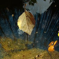 хроно-синкластический инфундибулум :: Елена Строганова