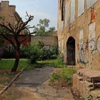 Солнечный двор, в котором никто не живет :: Татьяна [Sumtime]
