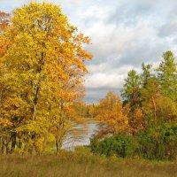 Золотая осень :: максим лыков