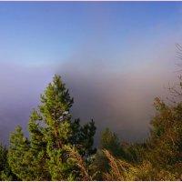 Сиреневый туман. :: Владимир Михайлович Дадочкин