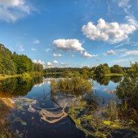 Река Оредеж :: Фёдор. Лашков