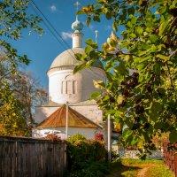 Боровск, Церковь Дмитрия Солунского (1804) в Рябушках :: Alexander Petrukhin