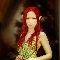 New Year Elf :: Таша Хофман