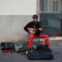 Уличный музыкант. :: Paparazzi