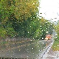 осень,дождь. :: petyxov петухов