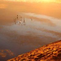 Отражение в воде :: Влад В.