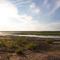 Песочные острова реки :: Natalia Petrenko