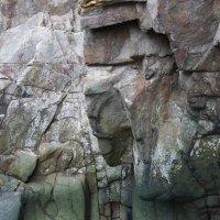 Структура скалы :: Natalia Harries