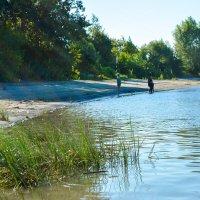 река Обь :: Света Кондрашова
