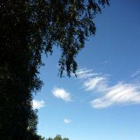 Август :: Ольга