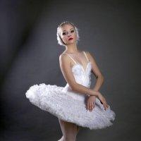 Алиса :: Вадим Заблоцкий