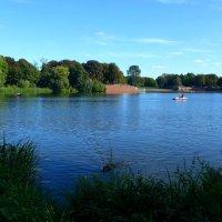 Про озеро в городском парке и плавающию собаку :: Nina Yudicheva
