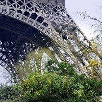 мой Париж :: Galina Belugina