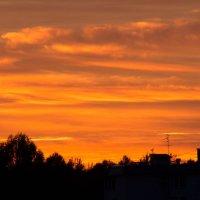 Закат с птичками 6 сентября :: Михаил Аленин