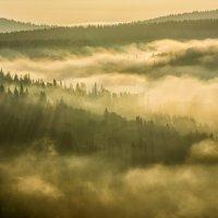 Утро :: Александр Чазов