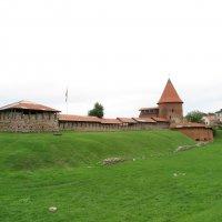 Каунасский замок :: Оксана Кошелева