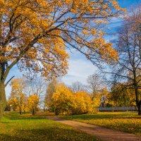 Осень в пригороде 3 :: Виталий