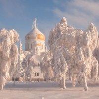 Морозно. :: Тамара Андреева