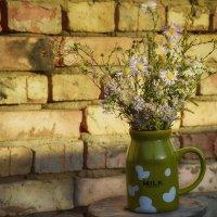 цветы степей :: Ксения