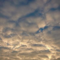 На закате :: Надежда