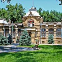 Бывшая резиденция Великого князя Николая Константиновича в Ташкенте :: Светлана