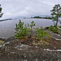 Онежское озеро.Острова :: Валерий Талашов