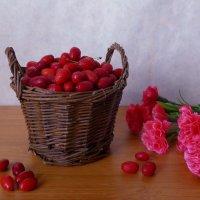 Кизил и гвоздика :: Nina Yudicheva