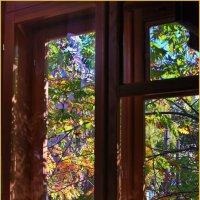 Осень в окне... :: Владимир Михайлович Дадочкин