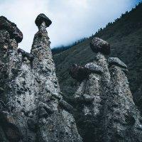 Каменные грибы :: Иван Янковский