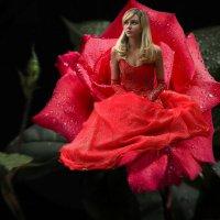 Цветочная фея :: Оля Дубровкина