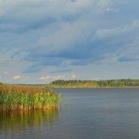 Озерная гладь :: Николай Танаев